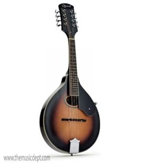 Ozark 2254 - A Model Mandolin